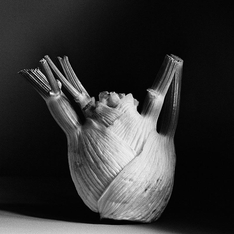 Emmanuel-Pineau-black-and -white-photography
